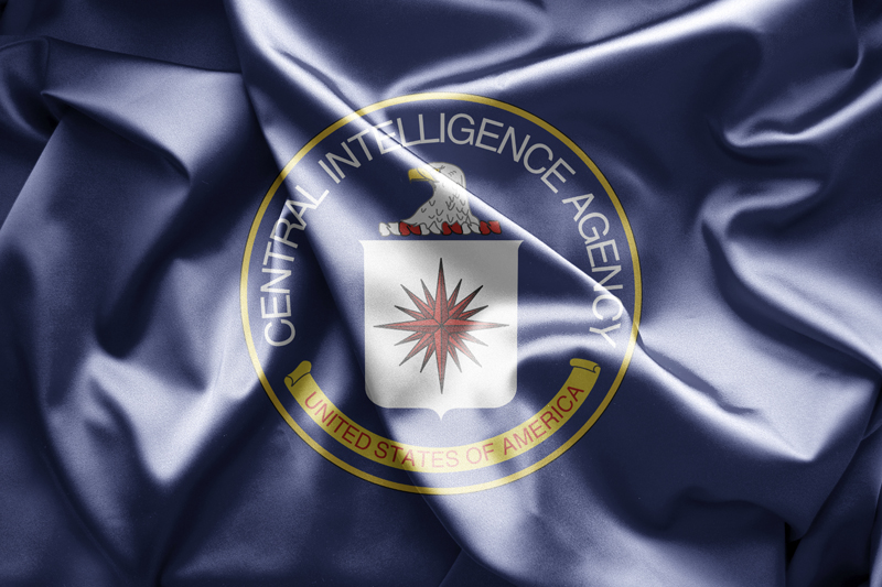 Recruited—How I Got Into the CIA