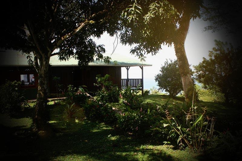 Spooky stuff:  Bella Vista Lodge, Dominical, Costa Rica
