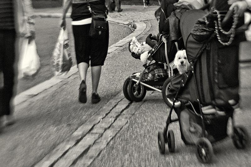 The Belly Bag: A Fashion Faux Pas?
