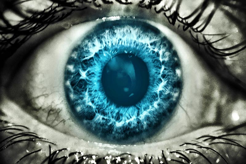 Eyelids: A Very Brief Tale of Spies and Madness