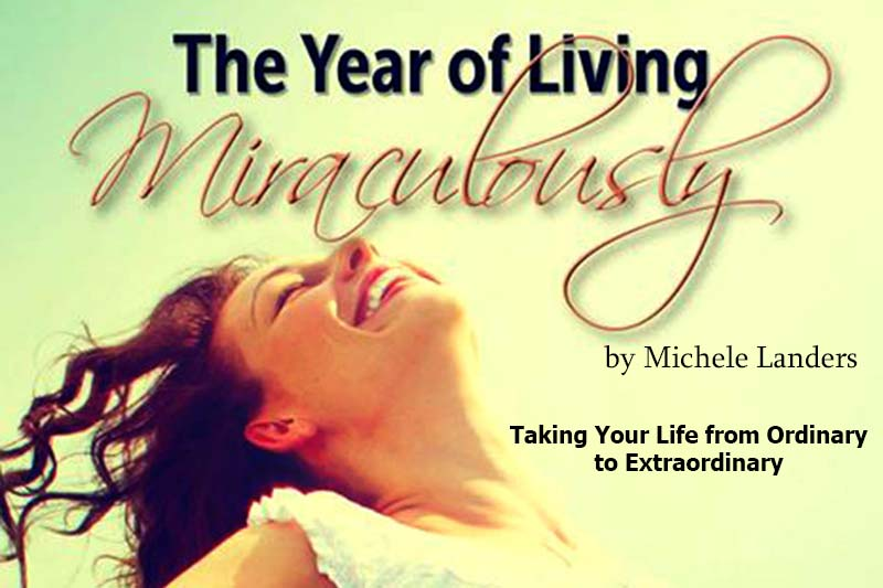 FC Media NEW BOOK: The Year of Living Miraculously by Michele Landers