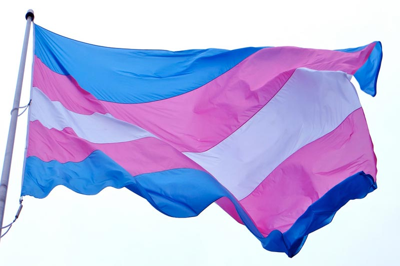 Crunches and Compassion: Transgender Rights and the Cisgender Community